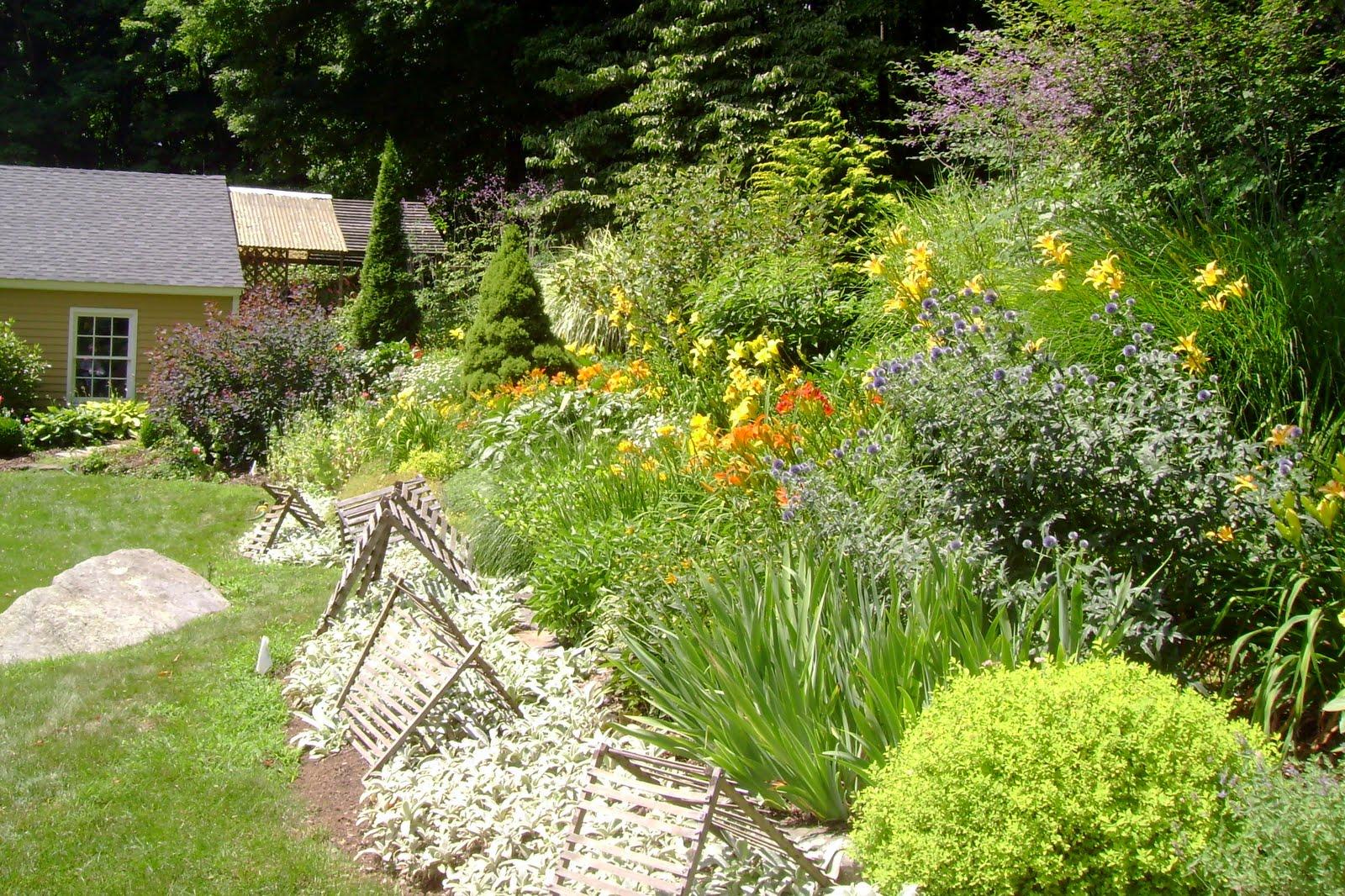 Sydney eddison 39 s garden tolland garden paths for Landscape gardeners sydney